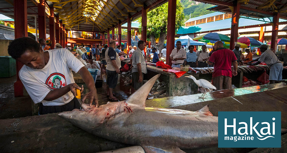 Scientific Research in the Fish Market | Hakai Magazine