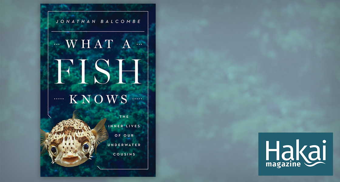 Book Review: What a Fish Knows | Hakai Magazine