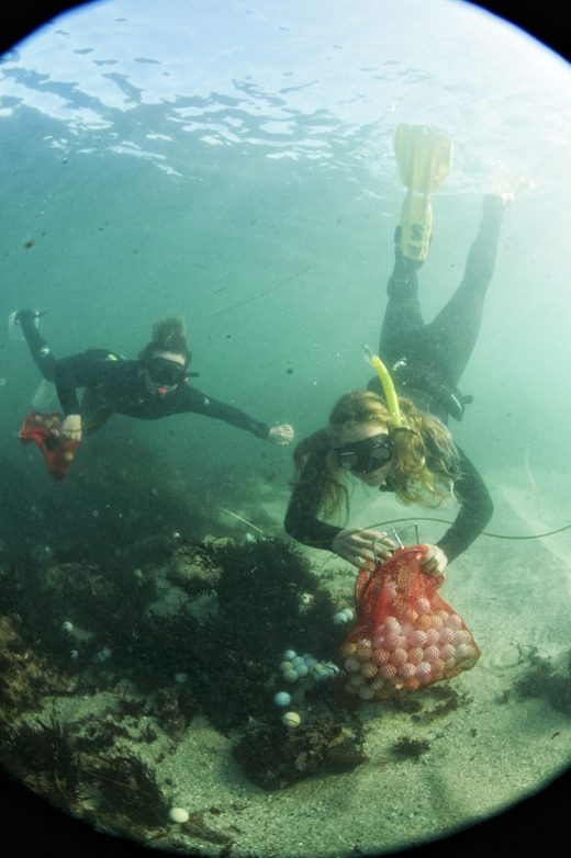 Aex Weber and Jack Johnston collecting golfballs off the ocean floor