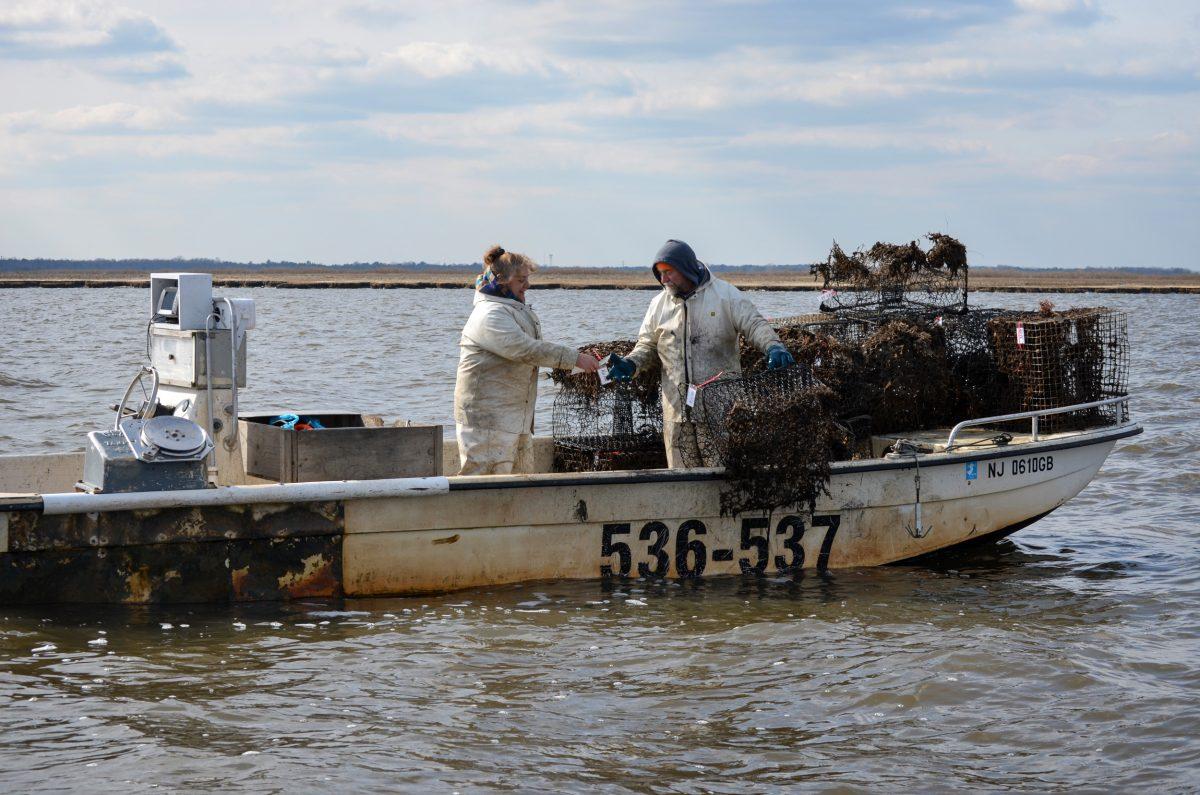 Karen and Warren Unkert retrieving lost crab traps