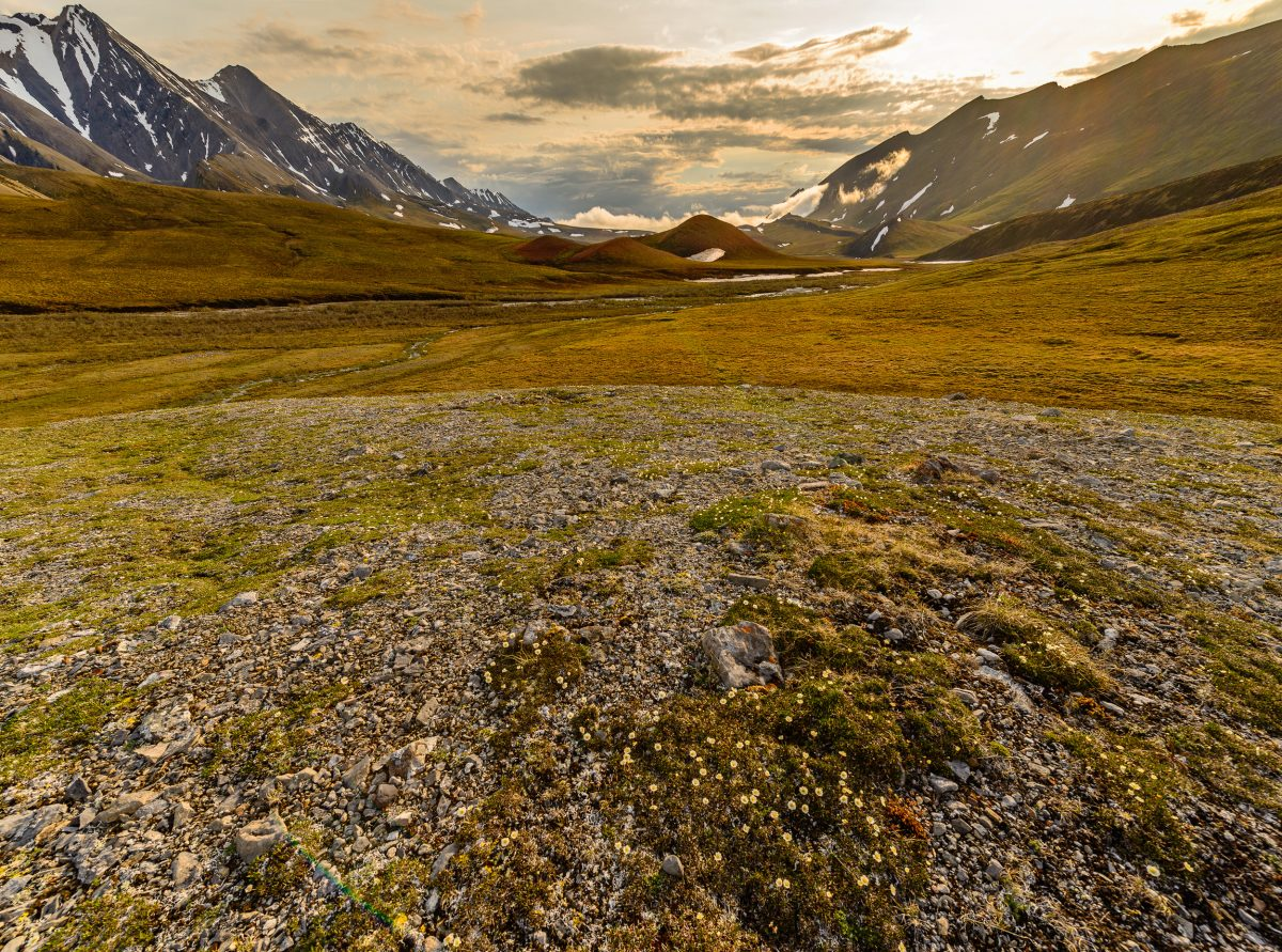 A storm clears in the late evening during the summer solstice in the valley between Shublik and Sadlerochit Mountains of the Brooks Range, in the Arctic National Wildlife Refuge.