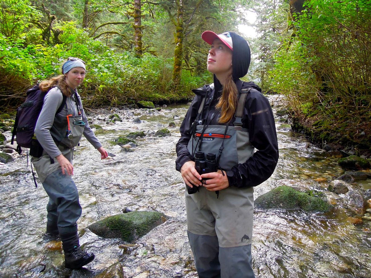 researcher Kirsten Wilcox stands in a stream